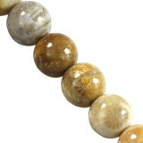 chrysanthemum coral fossil beads 4 mm / semi-precious stone