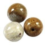 chrysanthemum coral fossil beads 6 mm / semi-precious stone