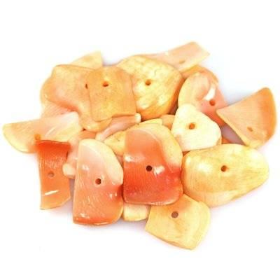 shells flakes cut apricot 0.8-2.5 cm
