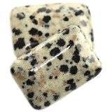 bricks dalmation jasper 14 x 20 mm