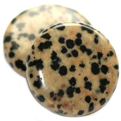 Münzförmige Steinperlen Dalmatinerjaspis 25 mm / Halbedelstein
