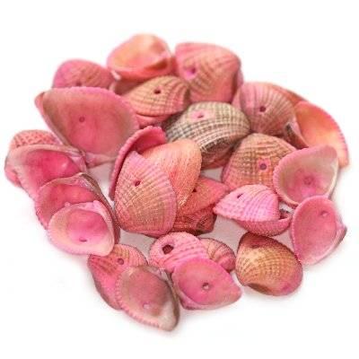 muszelki różowe 1.5-2 cm